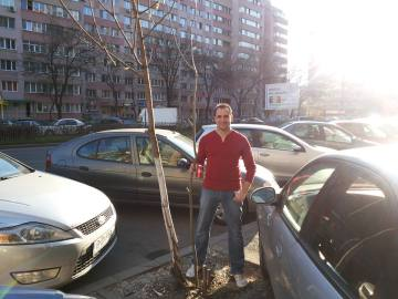 Planting trees on the boulevard - Razvan Costea